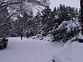 Letenské sady - panoramio (108).jpg