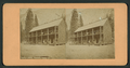 Leydig's Hotel, Yosemite Valley, Cal, from Robert N. Dennis collection of stereoscopic views.png