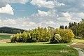 Liebenfels Rosenbichl Landschaft mit Fluren und Feldern 27042020 7459.jpg