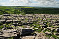 Limestone pavement above Malham Cove (5833).jpg