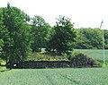 Linbasta förslöv skåne 2009.jpg