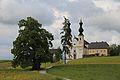Linde in Maria Bühel-4.jpg