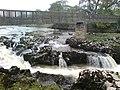 Linton Falls - geograph.org.uk - 360804.jpg