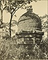 Lion and dragon in northern China (1910) (14597403860).jpg