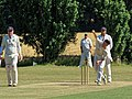 Little Hallingbury CC v. Thorley CC at Gaston Green, Essex 020.jpg