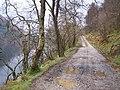 Loch Eck, Benmore-Glenbranter Forestry Road - geograph.org.uk - 159887.jpg
