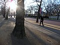 London , Westminster - The Mall - geograph.org.uk - 1739440.jpg