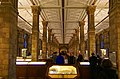 London - Cromwell Road - Natural History Museum XII.jpg