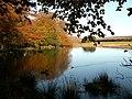 Longshaw Lake - geograph.org.uk - 379433.jpg