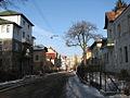 Lviv - Barvinskykh str - panorama.jpg
