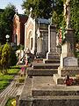 Lychakiv Cemetery (01).jpg