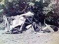 Lynn Garrison crash September 16, 1970 SV4.C Stampe.jpg