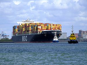 MSC Pamela p02, at the Amazone harbour, Port of Rotterdam, Holland 29-Jul-2007.jpg