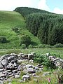 Maes-y-Betws (Ruin) and Doethie Crossing, Ceredigion - geograph.org.uk - 515635.jpg