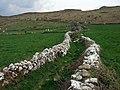 Maes-y-mynydd (12) - geograph.org.uk - 1264020.jpg