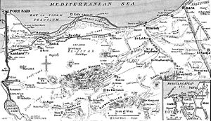 A 1917 black and white line drawing map showing the Mediterranean Sea coastline of the Sinai Peninsula, with Port Said and the Suez Canal shown at far left and Rafa and the Egypt/Palestine border shown at far right. A small inset at bottom right shows the wider area of Egypt and Palestine.