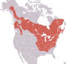 Marmota monax range.png