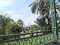Marrakesh - 2008 - panoramio (61).jpg