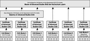 Master of Advanced Studies - Master of Advanced Studies (MAS) Program