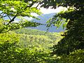 Matthias Lothhammer Naturpark Neckar-Odenwald oberhalb Zwingenberg, nördlich des Neckars, Richtung Süden.jpg