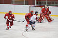 McGill Martlets 18 janvier 2011 1.jpg