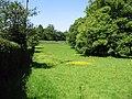 Meadow near Henbury Lodge - geograph.org.uk - 850309.jpg