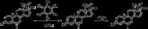 Megestrol - Image: Megestrol synthesis