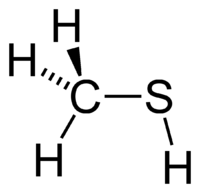 Methanethiol-2D.png