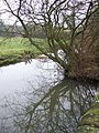 Mill pond at Stainsby Mill - geograph.org.uk - 652082.jpg