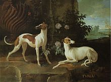 a painting of pair of small greyhound-like dogs