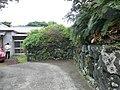 Mitsune, Hachijo, Tokyo 100-1511, Japan - panoramio (4).jpg