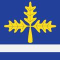 Mladenovac-zastava.png