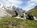 Mont Fortin, Val Veny (45695921272).jpg