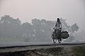 Morning Commuter - NH-34 - Sargachi - Murshidabad 2014-11-29 0147.JPG