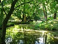 Moschen. Brücke im Park..JPG