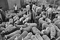 Moslims met schapen bij het slachthuis in Weesp, Bestanddeelnr 934-4820.jpg