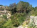 Mosta Valley 05.jpg