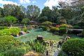 Mount Coot Tha Japanese Garden Brsibane.jpg