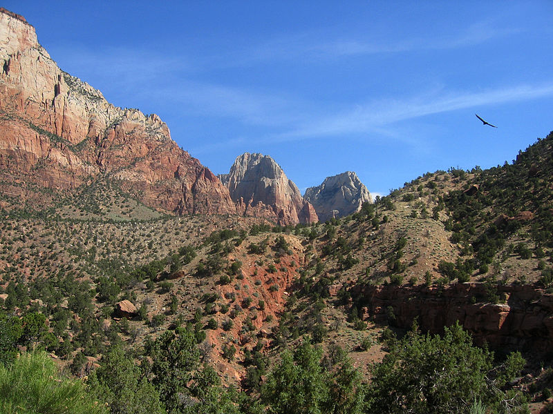 File:Mountains in Zion National Park, Utah.jpg