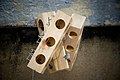 Mouse traps (2094565242).jpg