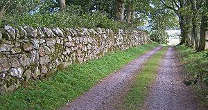 Dry stone - 17th century drystane dyke at Muchalls Castle, Scotland