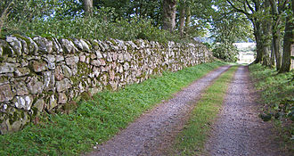 Dry stone - 17th century drystane dyke at Muchalls Castle, Scotland
