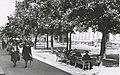 Munkegata med Stiftsgården (1948) (4034300634).jpg