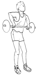 Musculation exercice arraché 2.png