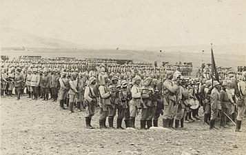 Muster on the Plain of Esdraelon 1914.jpg