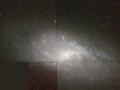 NGC 4525 hst 09042 R814G606B450.png