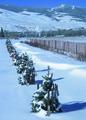 NRCSWY02017 - Wyoming (6899)(NRCS Photo Gallery).tif