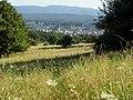 NSG Magerwiesen am Eulenkopf (Blick Richtung Weilerbach).jpg