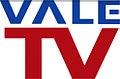 NUEVO LOGO VALE TV 2008-2009.jpg