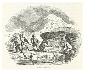 Kerguelen Islands - Illustration from John Nunn's book about the three years he and his shipwrecked crew survived on the island in the 1820s.